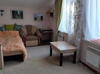 1 комнатная квартира в с. Сновянка