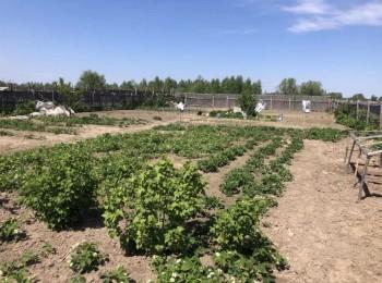 Земельный участок в р-не Масанов