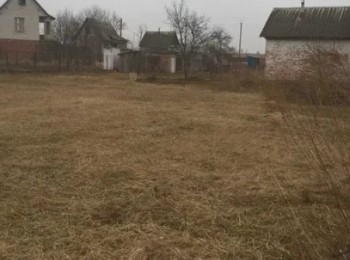 Дача СО Стрижень, Полуботки