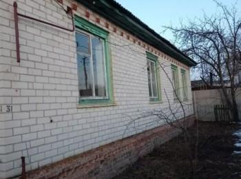 Дом в с. Количевка