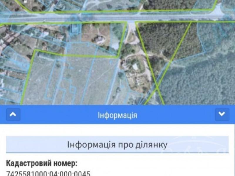 Земельный участок в с. Сновянка, возле трассы